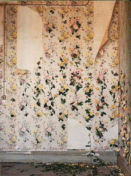 Torn Wallpaper